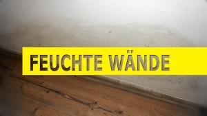 Trockenlegung feuchter Wände